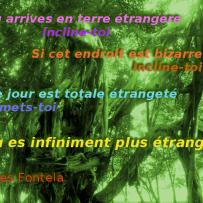 Tu es infiniment plus étrange