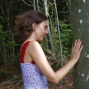 Prochaines sessions bien-être en forêt