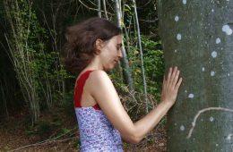 Prochaines sessions de bains de forêt