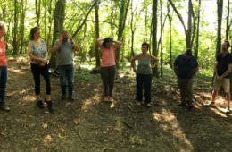 Conseil en forêt «comment accélérer la réconciliation avec la nature ?»