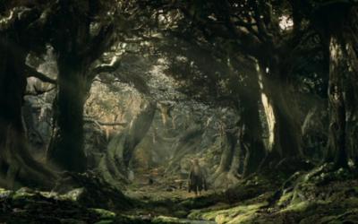 Nouveau : des bains de forêt à Fangorn