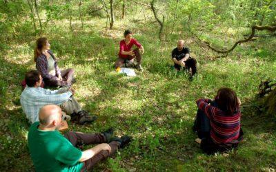 """Formation en forêt """"faciliter des cercles de partage dans le contexte de la Transition Ecologique"""""""