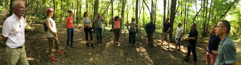 """Conseil en forêt """"comment accélérer la réconciliation avec la nature ?"""""""