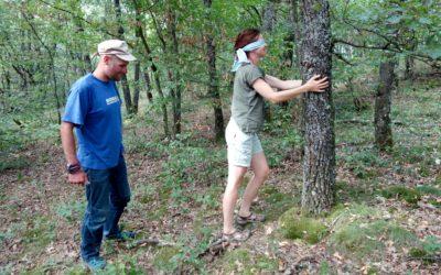 Auprès de mon arbre (CNV et forêt)